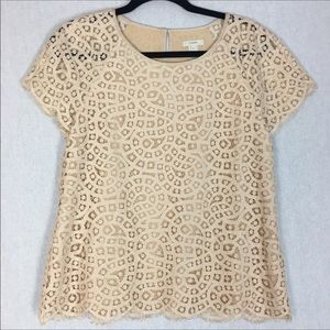 J.Crew Lace Short Sleeve Top Size 8